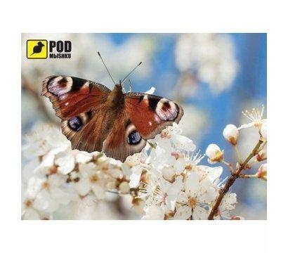 Фото коврика для мыши Podmyshku Весна-Бабочка