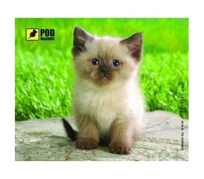 Фото коврика для мыши Podmyshku Сиамский котик - 4820148150896