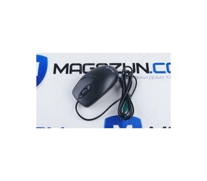 Фото №1 компьютерной мышки Genius NetScroll 120 PS/2 Black — 31011293102