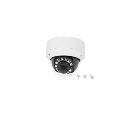 Фото IP видеокамеры Infinity CVPD-5000AT 3312