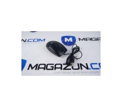 Фото №1 компьютерной мышки Genius DX-100X USB Black — 31010229100