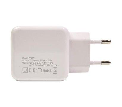 Фото №2 зарядного устройства PowerPlant W-250 - SC230013